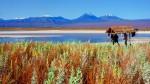 Lac---San-Pedro-de-Atacama.jpg